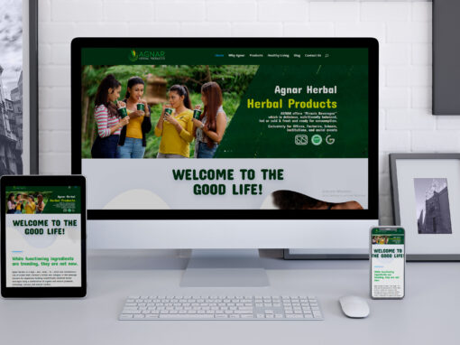 Agnar Website Design