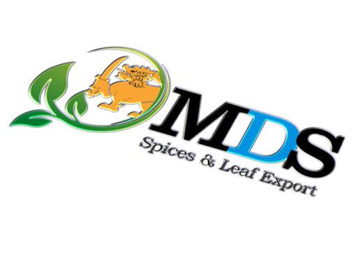 M.D.S Logo